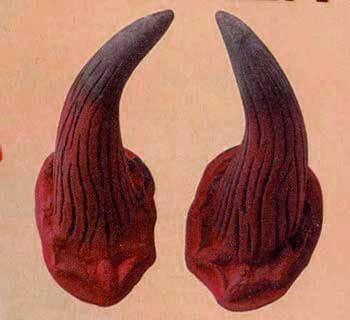 Devil Horns Economy