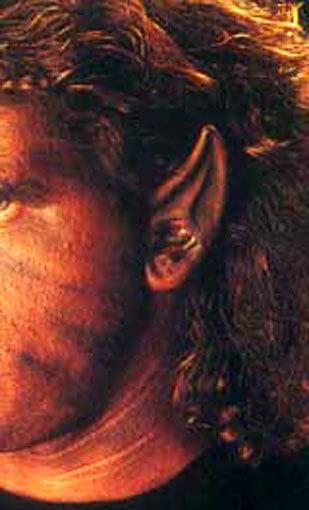 Werwolf Latex Ohren