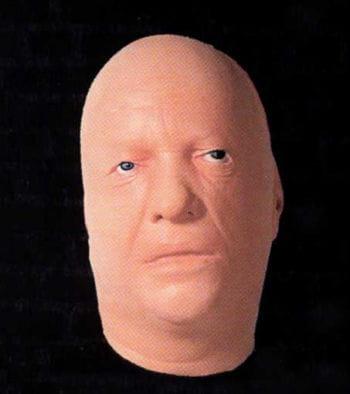 Display Latex Head