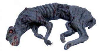 gehäuteter blutiger Hund