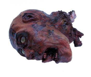 Zombie Schädel realistic