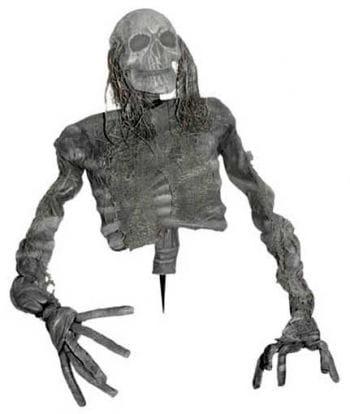 Verottender Skelett-Oberkörper