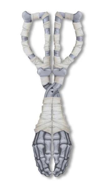 Skeletthand Eiszange