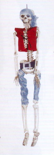 Pirate Skeleton with Red Waistcoat