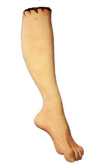 Rechter Fuß mit Wade Latex