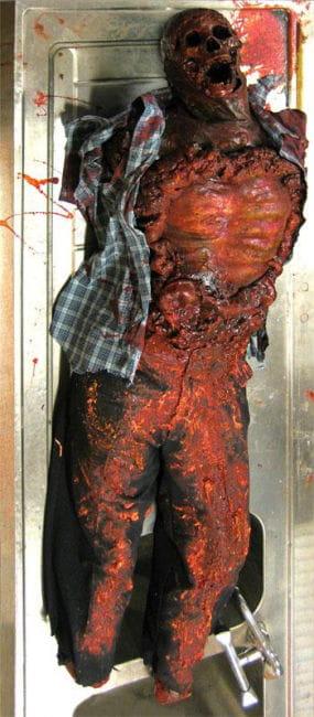 Putrid human cadavers