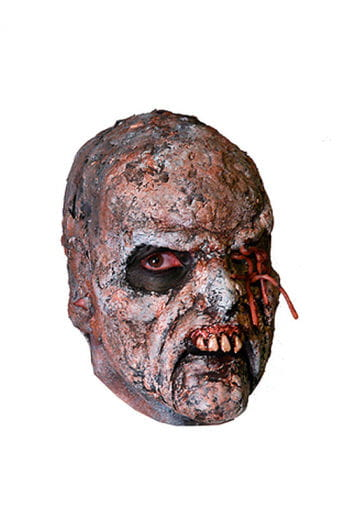 Rotten Zombie Face Prosthetic