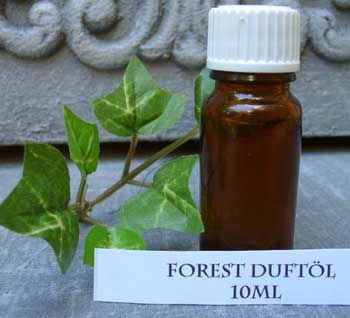 Fragrance Oil Forest