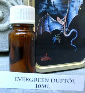 Fragrance Oil Evergreen