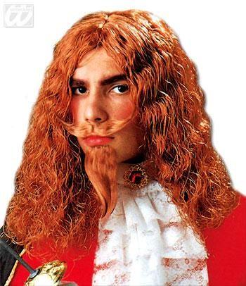 Musketeer Wig With Beard