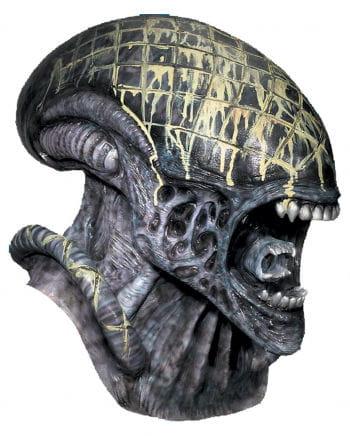 Alien vs. Predator mask