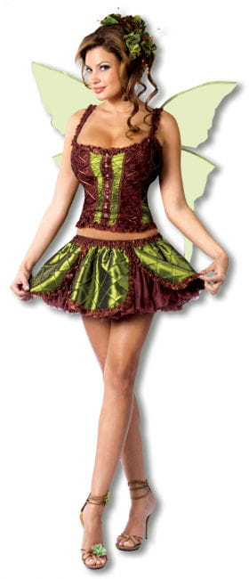 Enchanting Fairy Costume