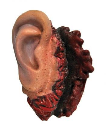 Bloody Latex Ear