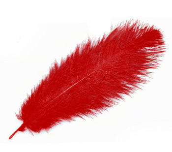 Genuine ostrich feather red