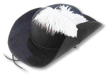 Noble Musketeer Hat