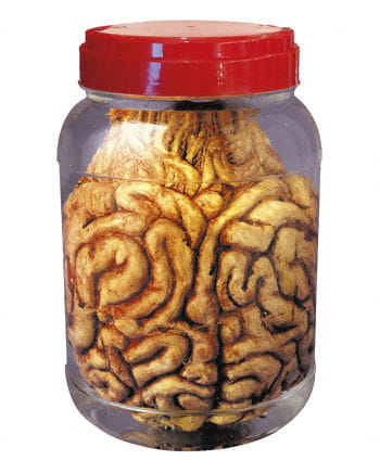 Jar with Brain