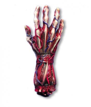 skinned hand right