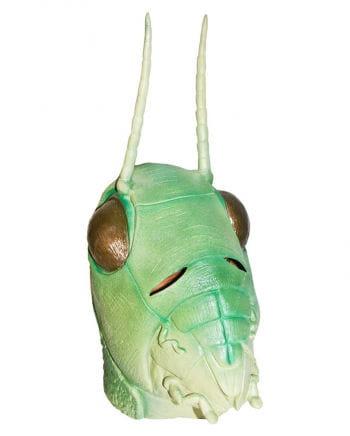 Grasshopper latex mask