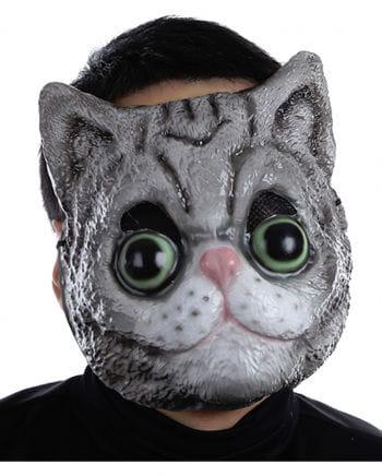 Catmask plastic