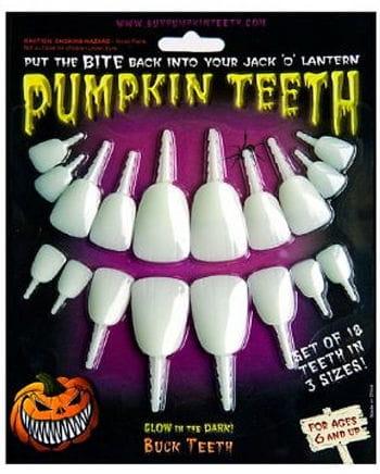 Bright squash teeth