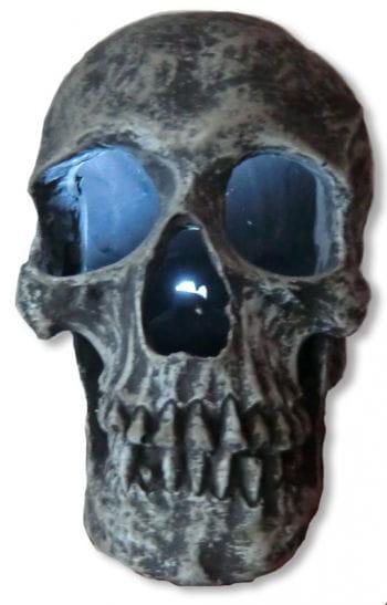 Leuchtender Totenkopf Steingrau