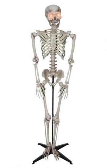 Realistisches Skelett Standfigur