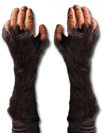 chimpanzees gloves