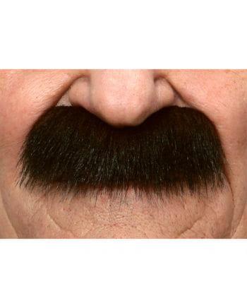 mustache brown