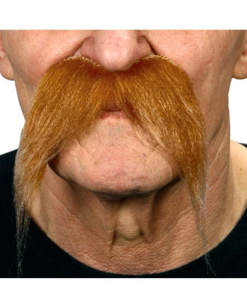 Mustache flecked red-blond