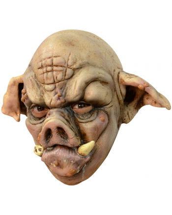 rabid pig