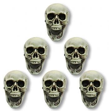 Totenköpfe 6 Stück