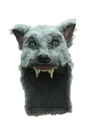 Wolf warrior helmet