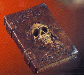 Witch book with skull