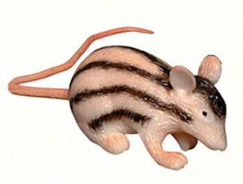 Squeezy Stripy Rat