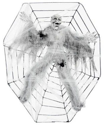 Cobwebs skeleton