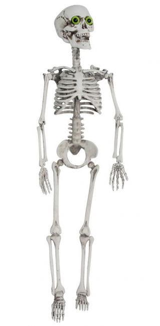 Skelett mit grünen Augen