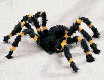 Yellow and Black Spider Small