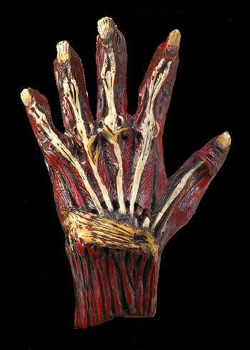Zombie Latex Gloves