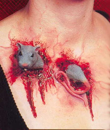 Rattenbiss Wunde