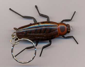 Cockroaches Keychains m. light