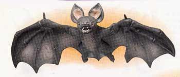 Giant Bat Latex