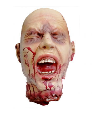 Chopped, life-size head