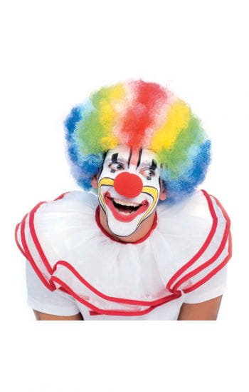 Clown Wig Multicolour