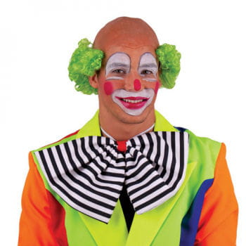 Clown Wig with Green Curls