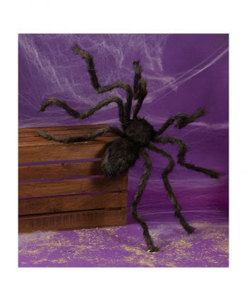 Black Monster Spider