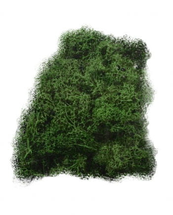 Halloween Decoration Moss 50 g