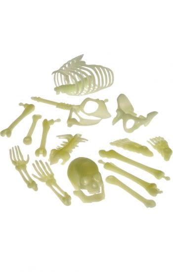 Glow in the Dark Skeleton Bone Parts