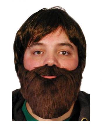 Beard dark brown