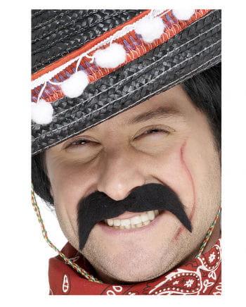 Mustache Bandit Mexican