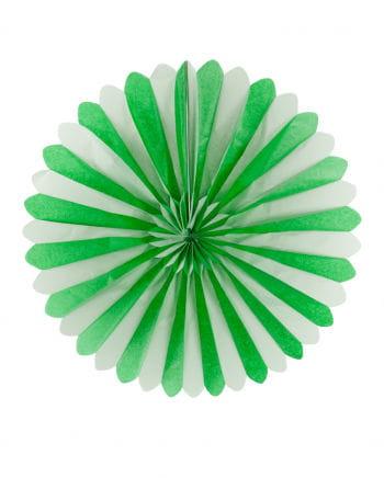 Rosettenfächer grün/weiß 60cm